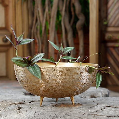 The Home Bowl with Legs Planter Brush Gold BG1973-B