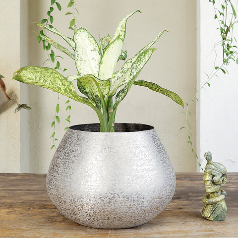 The Home Big Small Planter Hammered Silver NL1418-B