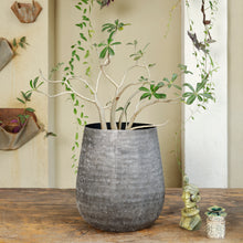 Load image into Gallery viewer, The home Small Barrel Planter Minki Black MB1644-C
