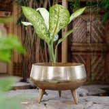 The Home Pot Planter with Legs Gold GD1639-B