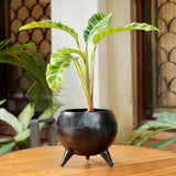 The Home Pot With Legs Planter Small Black CB1638-B