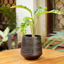 Load image into Gallery viewer, The home Barrel Planter Hammered Small Black 1512-B