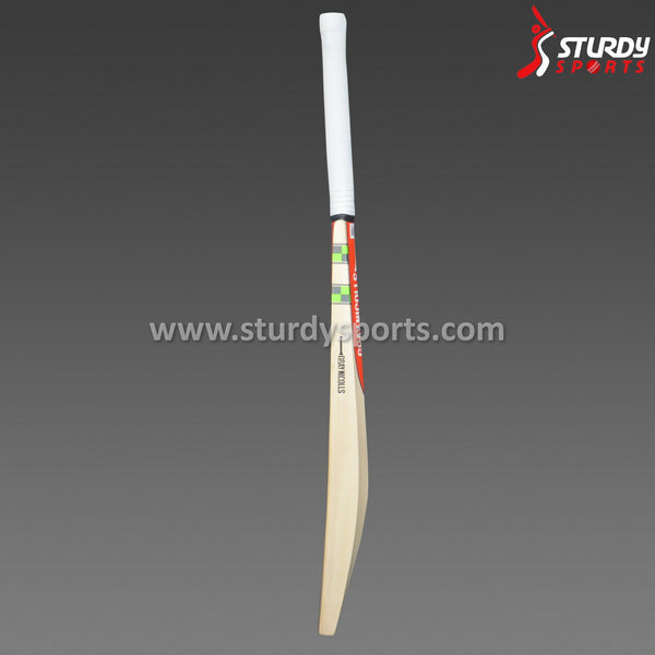 Gray Nicolls Technique 55 Training Bat (Junior) Sturdy Sports