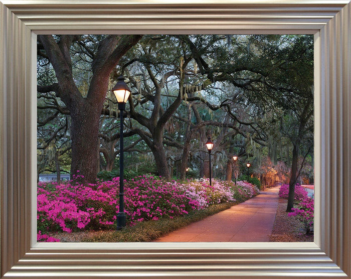 Forsythe Park By Winthrope Hiers - Mail Order Art