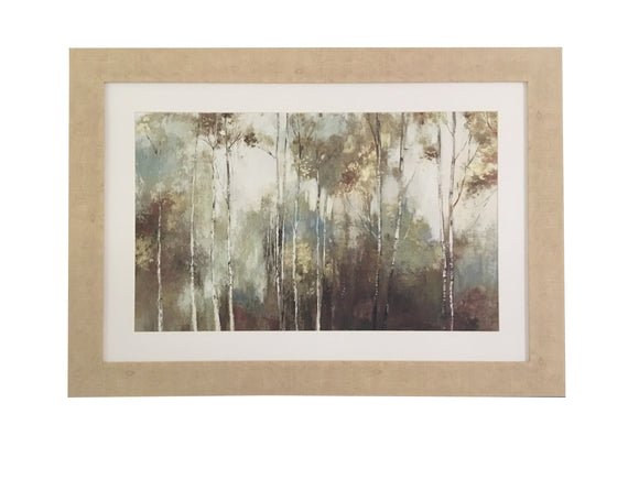 Fine Birch III- M8698S8 - Mail Order Art