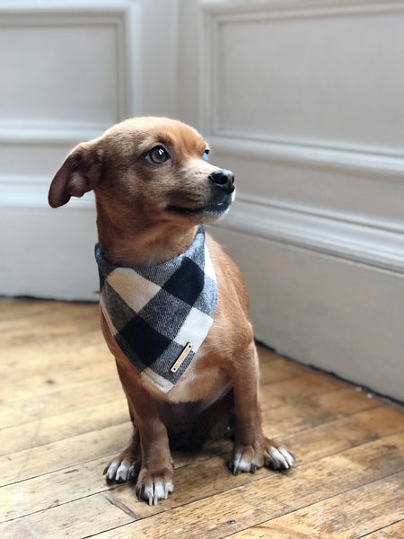 The Foggy Dog Flannel Bandana | Black and White Check
