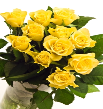 Tisted - Twelve Yellow Long Stem Roses.