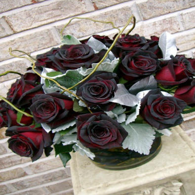 Baccara - Twelve Long Stem 'Black Roses'