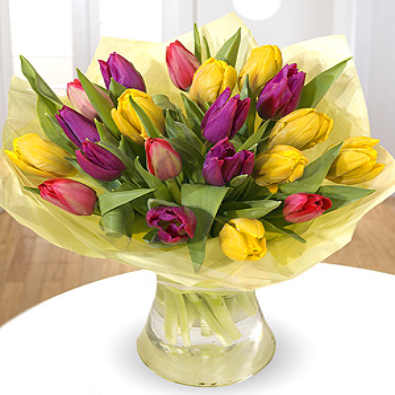 Crema - Mixed Tulip Bouquet.