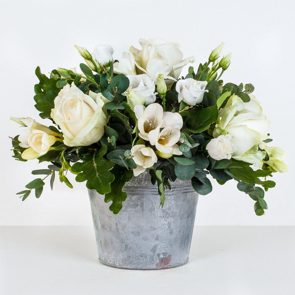 Alba -  White Roses & Freesia - Zinc Bucket.