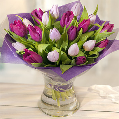 Crema - Purple/Lilac - Tulip Bouquet