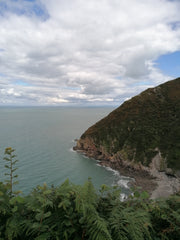 North Devon Coast