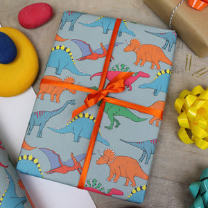 Dinosaur Multi Coloured Gift Wrap