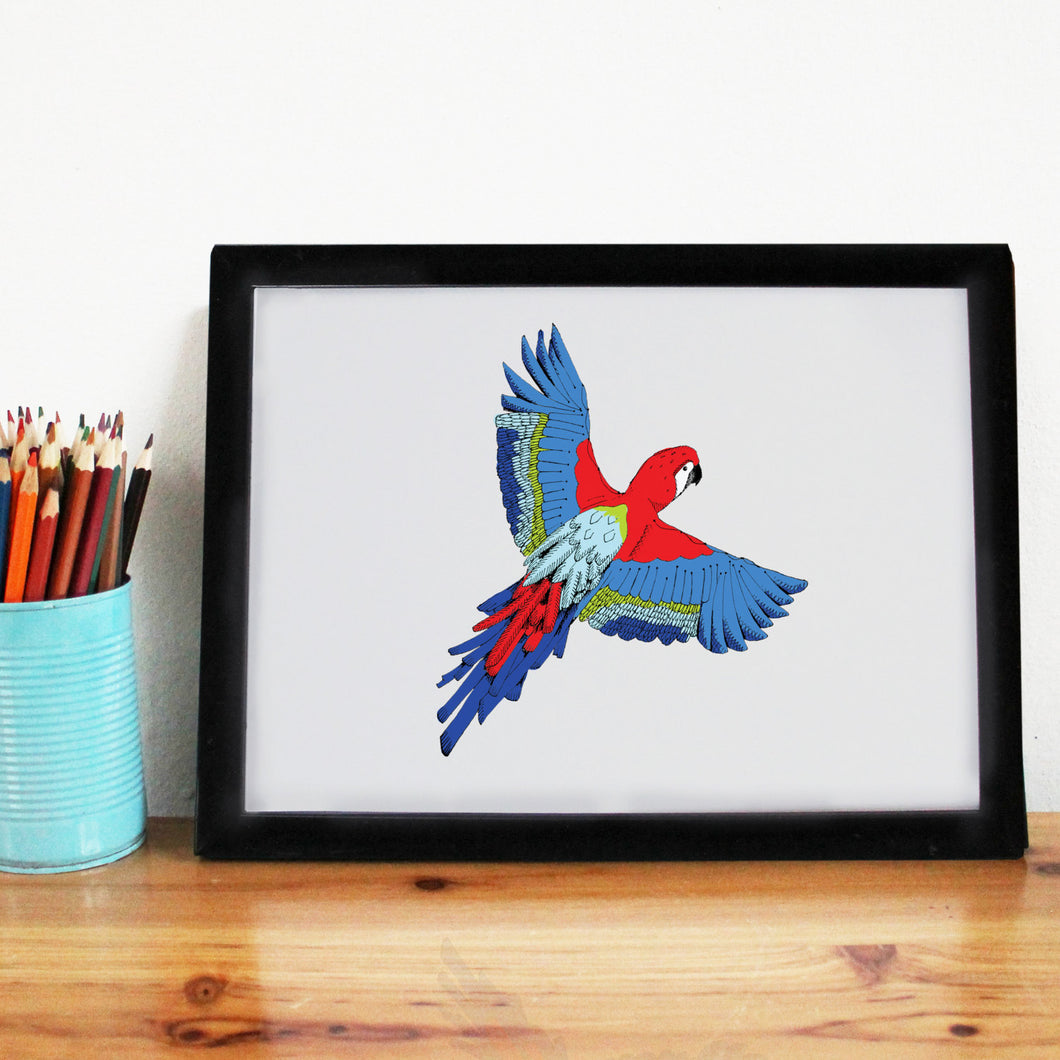 Tropical Parrot A4 Art Print - Martha and Hepsie