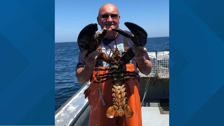 UNREAL: Giant Lobster Caught Off the East Coast of USA