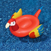 Giant Inflatable Parrots - 2 colors available