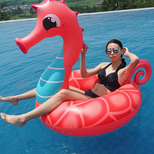 Giant Inflatable Seahorse | Little Miss Meteo