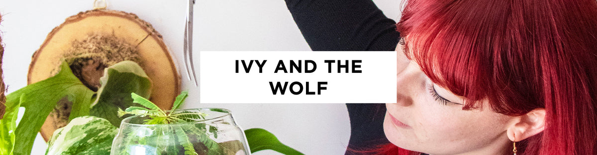 Women We Watch: Ivy And The Wolf