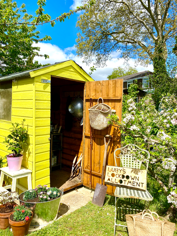 Yellow shed allotment inspiration luby howden