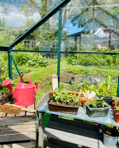 Greenhouse allotment inspiration luby howden