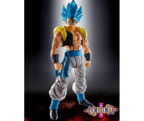 S.H.Figuarts Dragon Ball Z - SSJ God Blue Gogeta