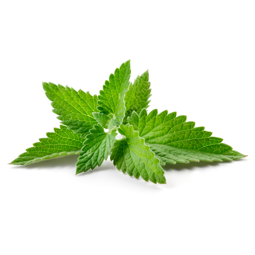 Spearmint, 4oz