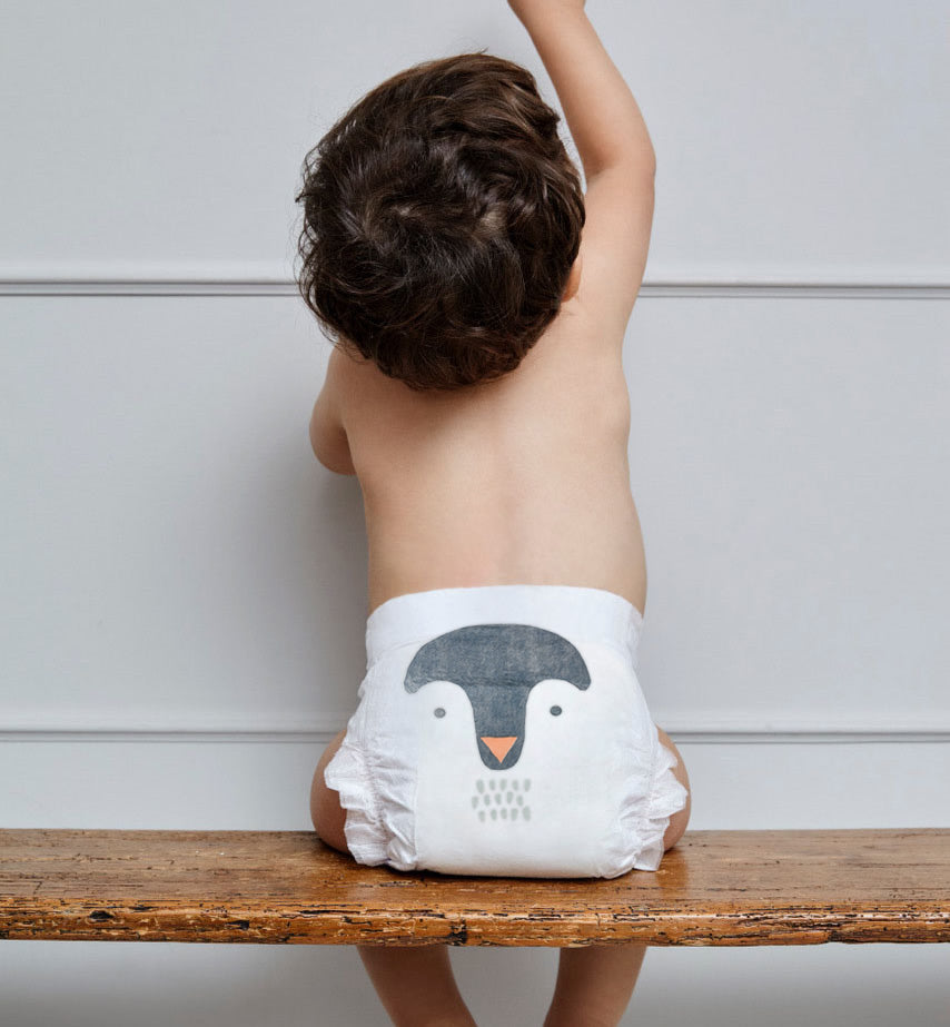 Sustainable penguin nappies