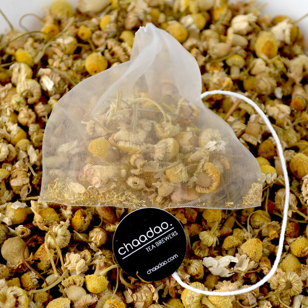 Camomile Herbal Floral Tea Pyramid