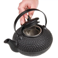 Japanese Cast Iron Styled Loose Leaf Teapot with Infuser