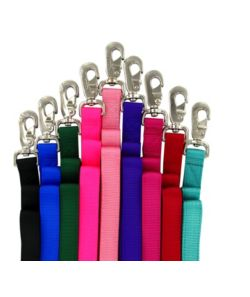 Double Layer Dog Lead