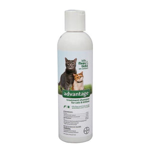 Advantage Premise Flea/Tick Cat and Kitten Shampoo