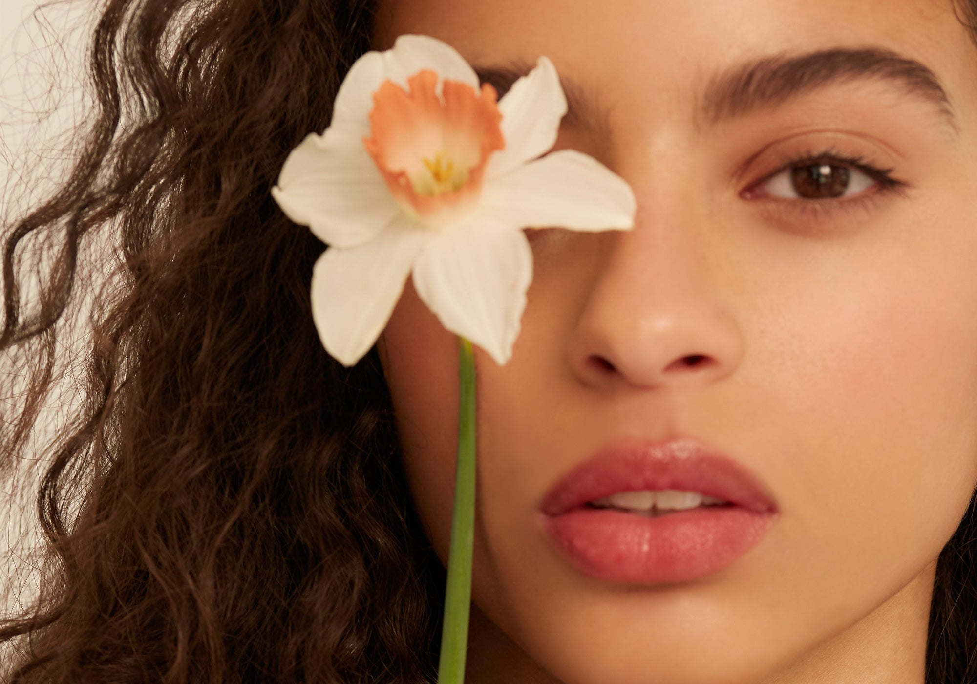 Inside Blossom: Why Our Love for Flowers is Always Blooming