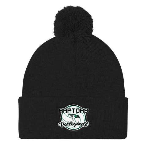 AMHS Raptors Pom Pom Knit Cap - Sports Parent Gear