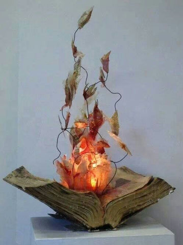 DIY fire books