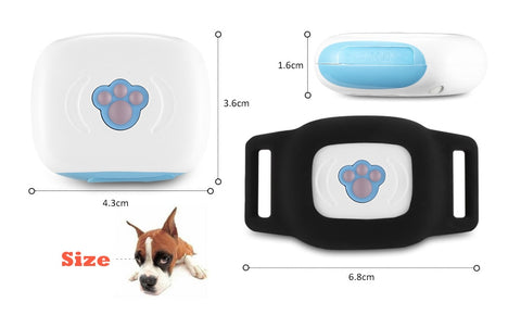 GPS Cat Collar Anywhere Blue