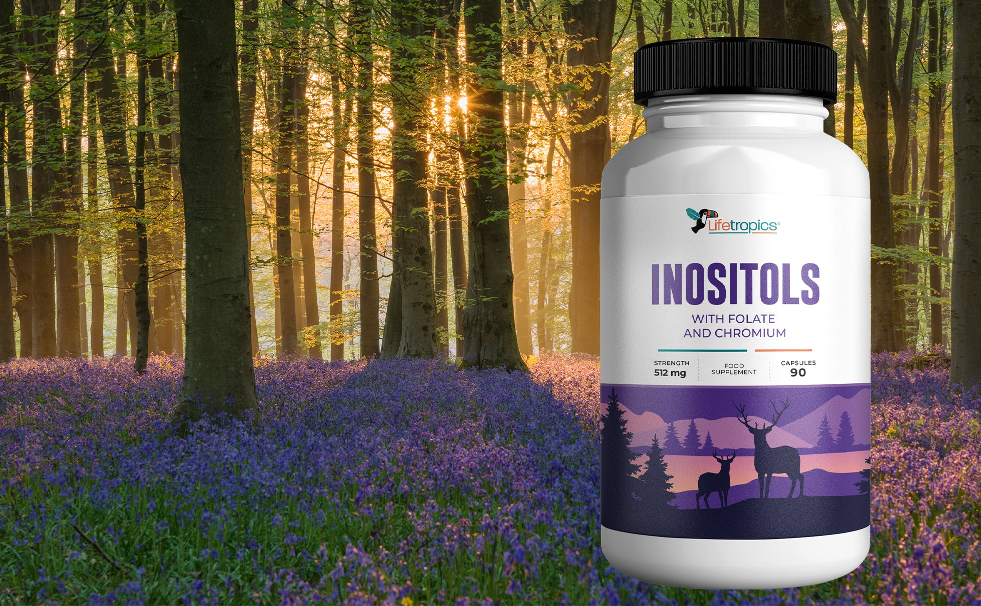 Inositols with Folate and Chromium Banner Picture