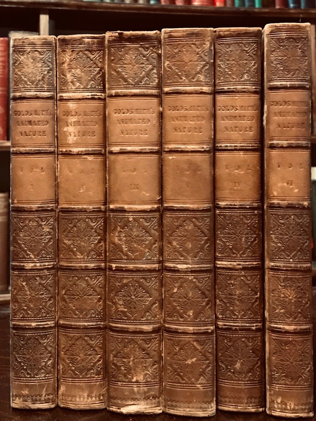 HISTORY OF THE EARTH AND ANIMATED NATURE - Goldsmith, 1816 - COMPLETE 6 Vols