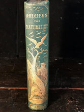 AUDUBON THE NATURALIST OF NEW WORLD: HIS ADVENTURES & DISCOVERIES, St. John 1866
