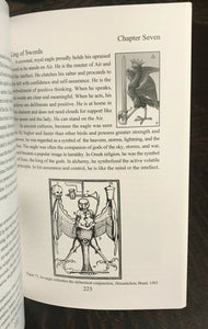 ALCHEMY AND THE TAROT - Robert Place, 1st Ed 2011 - MAGICK HERMETIC DIVINATION