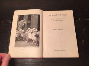 OUR DOMESTIC BIRDS Lessons in Aviculture John Robinson, First Edition 1913 RARE
