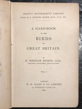 1894 ALLEN'S NATURALIST'S LIBRARY: BRITISH BIRDS 2 V. 64 Hand Colored Engravings