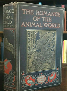 ROMANCE OF THE ANIMAL WORLD - 1st, 1905 - ILLUSTRATED STRANGE NATURAL HISTORY
