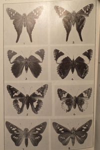 BUTTERFLIES OF THE DISTRICT OF COLUMBIA AND VICINITY A. Clark 1st/1st 1932 Illus