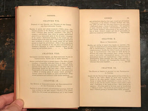 CROSS AND SELF FERTILISATION IN THE VEGETABLE KINGDOM - DARWIN, 1st US Ed 1877