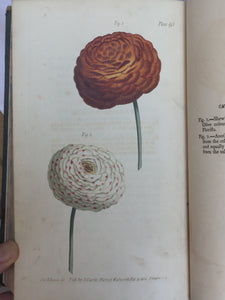 LECTURES ON BOTANY AS DELIVERED TO HIS PUPILS, William Curtis, 1st 1803 - PLATES