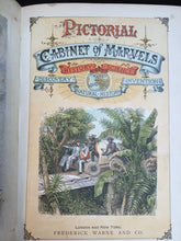 PICTORIAL CABINET OF MARVELS, Ca. 1880s Woodblock Color Plates, Natural History
