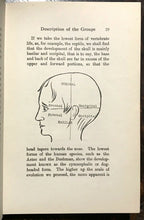 PHRENOSCOPY: SYSTEM OF ASTRO PHRENOLOGY - Sepharial, 1914 - ASTROLOGY DIVINATION