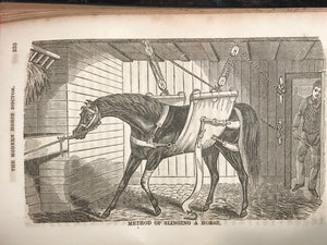 1854 ~ THE MODERN HORSE DOCTOR by DR. GEORGE DADD, 1st / 1st ILLUSTRATED