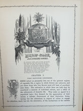 RUSTIC ADORNMENTS FOR HOMES OF TASTE, Shirley Hibberd 1870 Gardening 230+ Plates