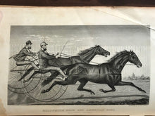 1871 - 1st Edition, EVERY HORSE OWNERS' CYCLOPEDIA - ILLUSTRATED
